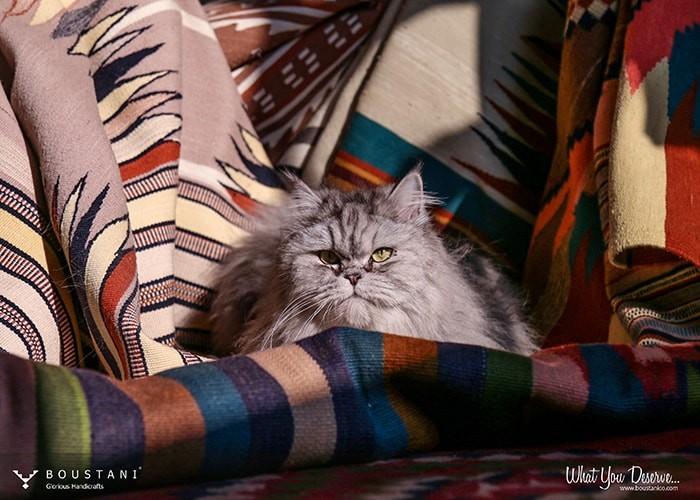 Boustani Glorious Handicrafts-1015