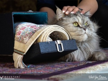Boustani Glorious Handicrafts-1002